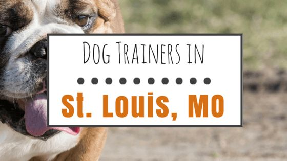 10 Popular dog trainers in st. Louis, mo