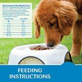 Top Best Sensitive Stomach Dog Foods Reviews
