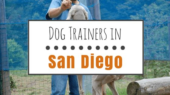 6 Top dog trainers in san diego