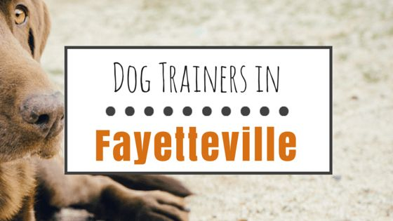 9 Positive dog trainers in fayetteville, nc