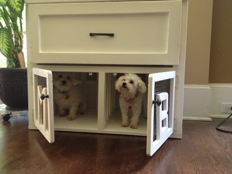 Dog indoor kennel