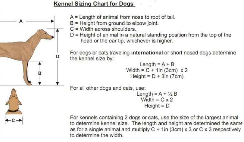Kennel measurements