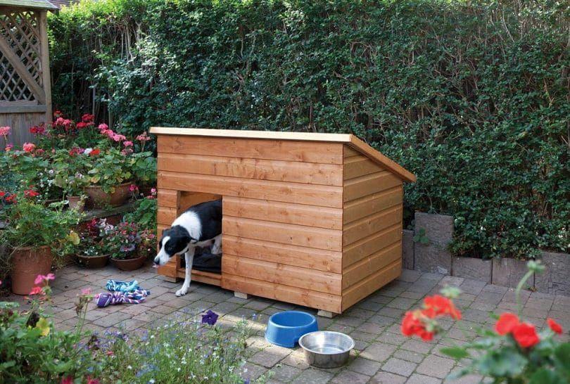 Dog kennel maintenance