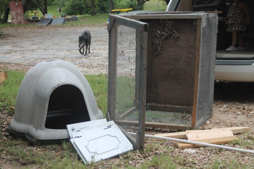 Dog houses and behavioral shifts