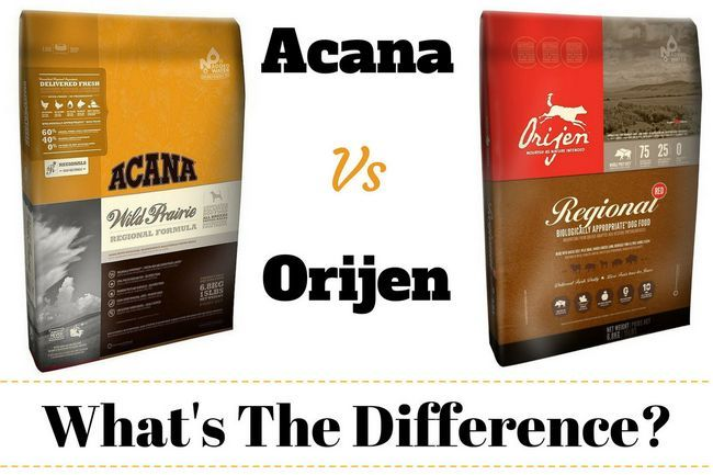 Acana vs orijen – what's the difference? Which is best and why?