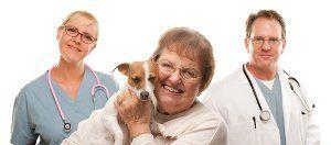 Get help choosing a veterinarian