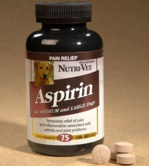 Aspirin for dogs: can I give my dog aspirin? Is it safe?
