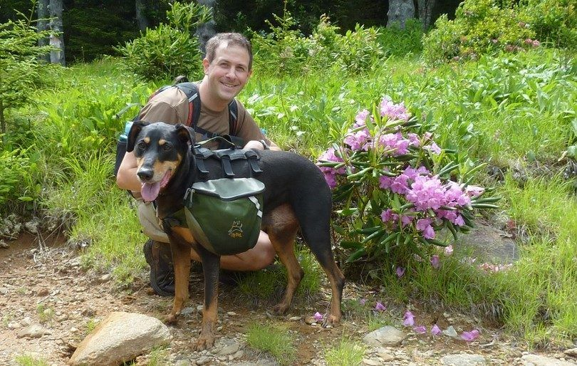Backpacking with dogs: essentials tips and tricks