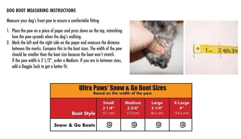 Dog paws measuring