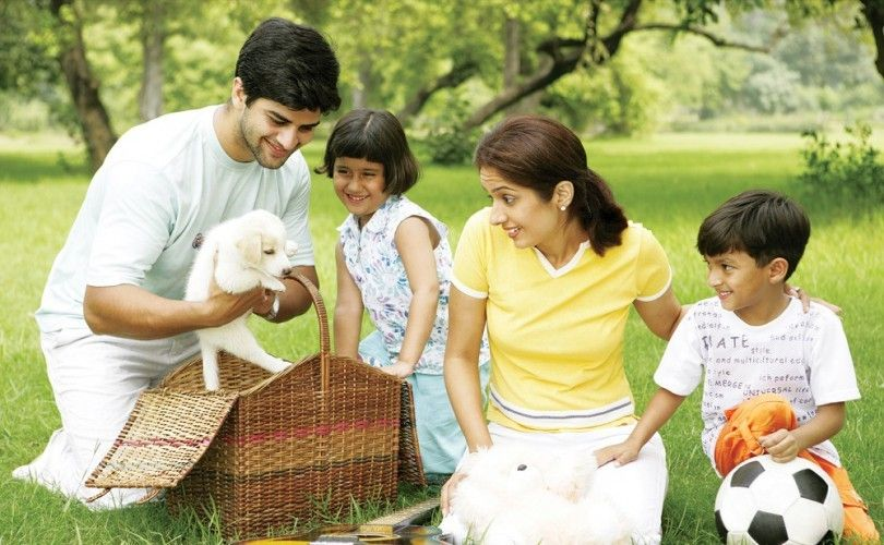 Best dog breeds for families: top 4 picks for family-friendly dogs