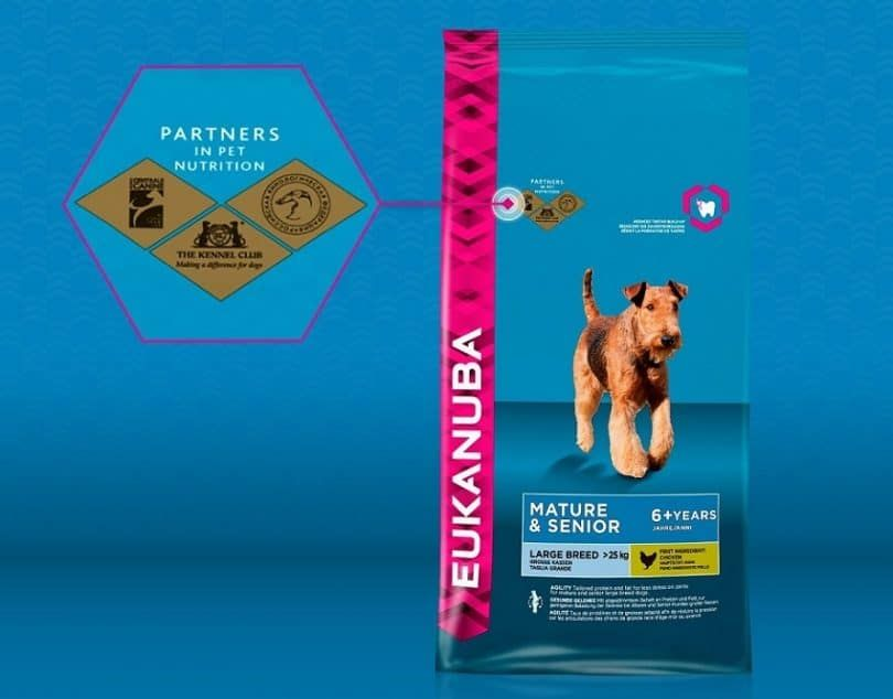 EUKANUBA Excel Adult Dog Food With Lamb