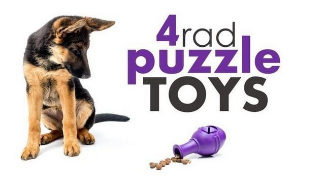 Best dog puzzle toys: help your pup stay busy