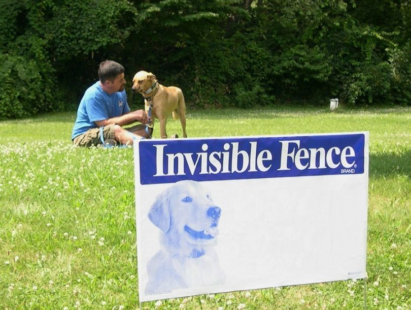 Invisible dog fences