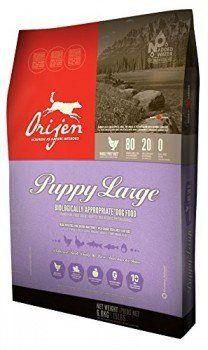Bag of Orijen large breed puppy food on white bg