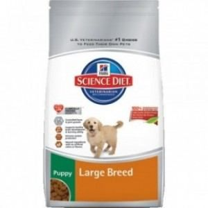 Hills puppy food bag on white background