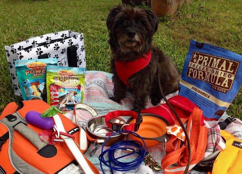 Dog camping kit