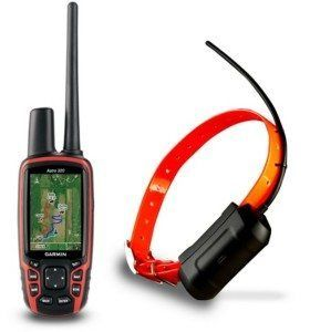 Can I get my dog gps tracking?