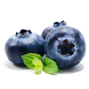 Can I give my dog blueberries?
