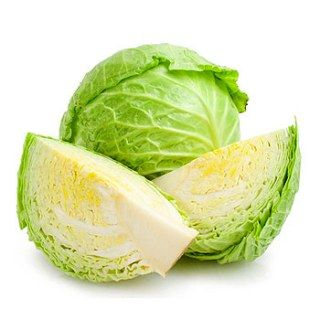 Can I give my dog cabbage?