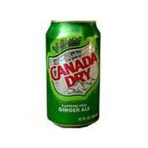 Can I give my dog ginger ale?