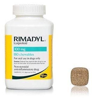 Can I give my dog rimadyl?