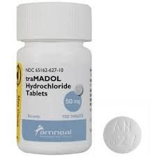 Can I give my dog tramadol?