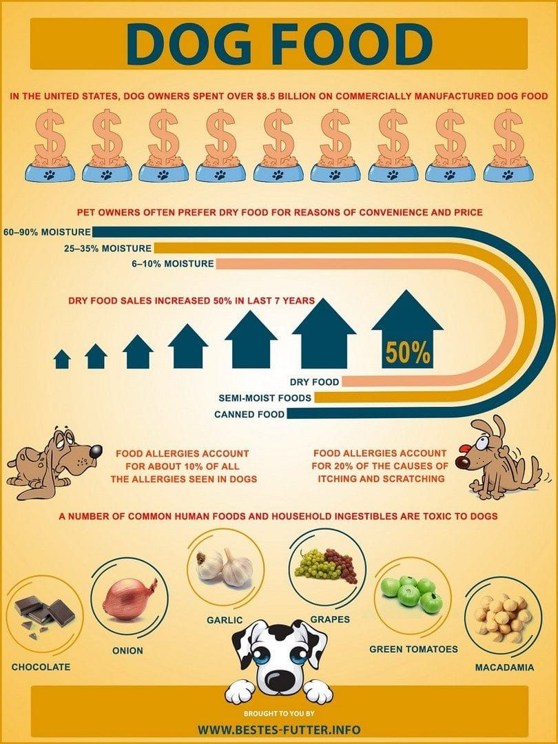 Infos about dog food