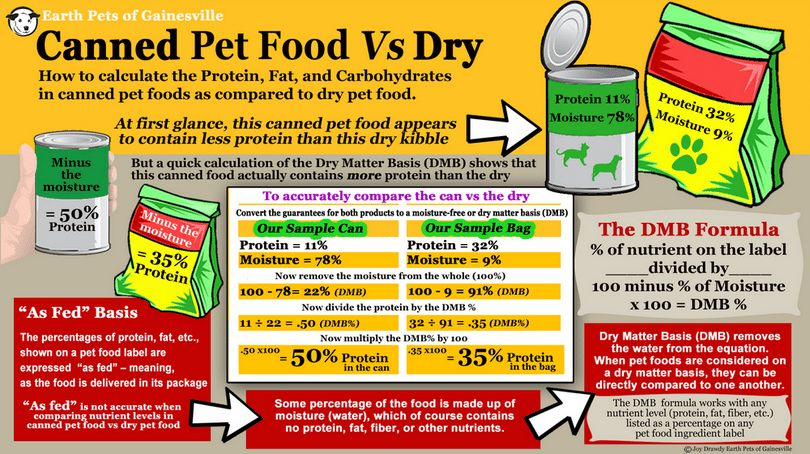 Canned food VS Dry food