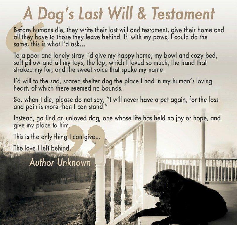 A dog`s last will & testament