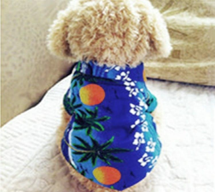 Urparcel Dog Cat T Shirt Pet Clothing Shirt