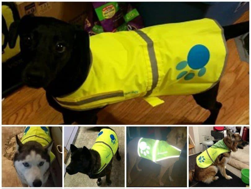 Reflective Dog Vest Large with Adjustable Strap