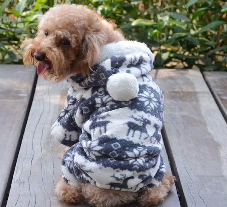 QIYUN.Z ONLY for Small Dogs Casual Four Legs Black White Velvet Snow