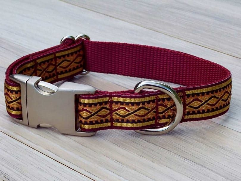 Designer Dog Collar on the floor