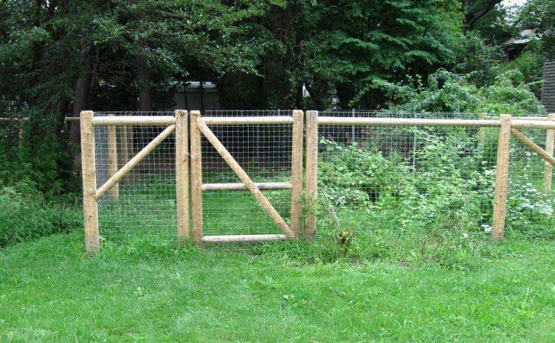 Dog fence outside