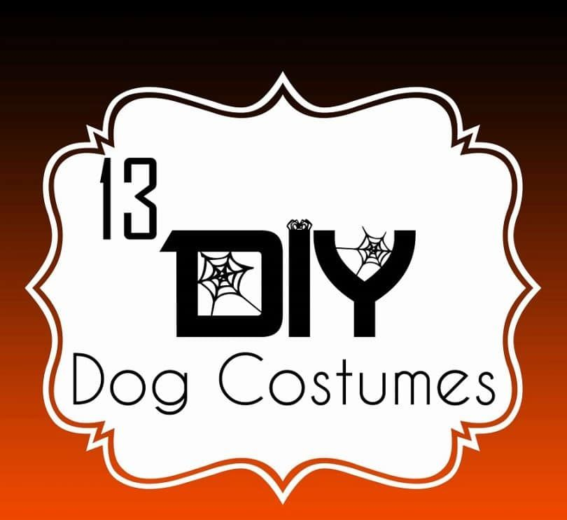 13 DIY Dog Costumes