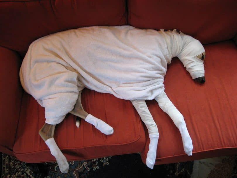 Making a mummy costume