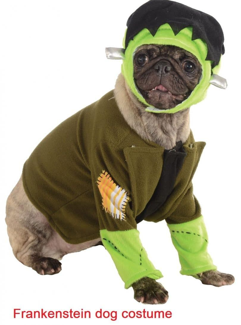 Frankenstein pet costume