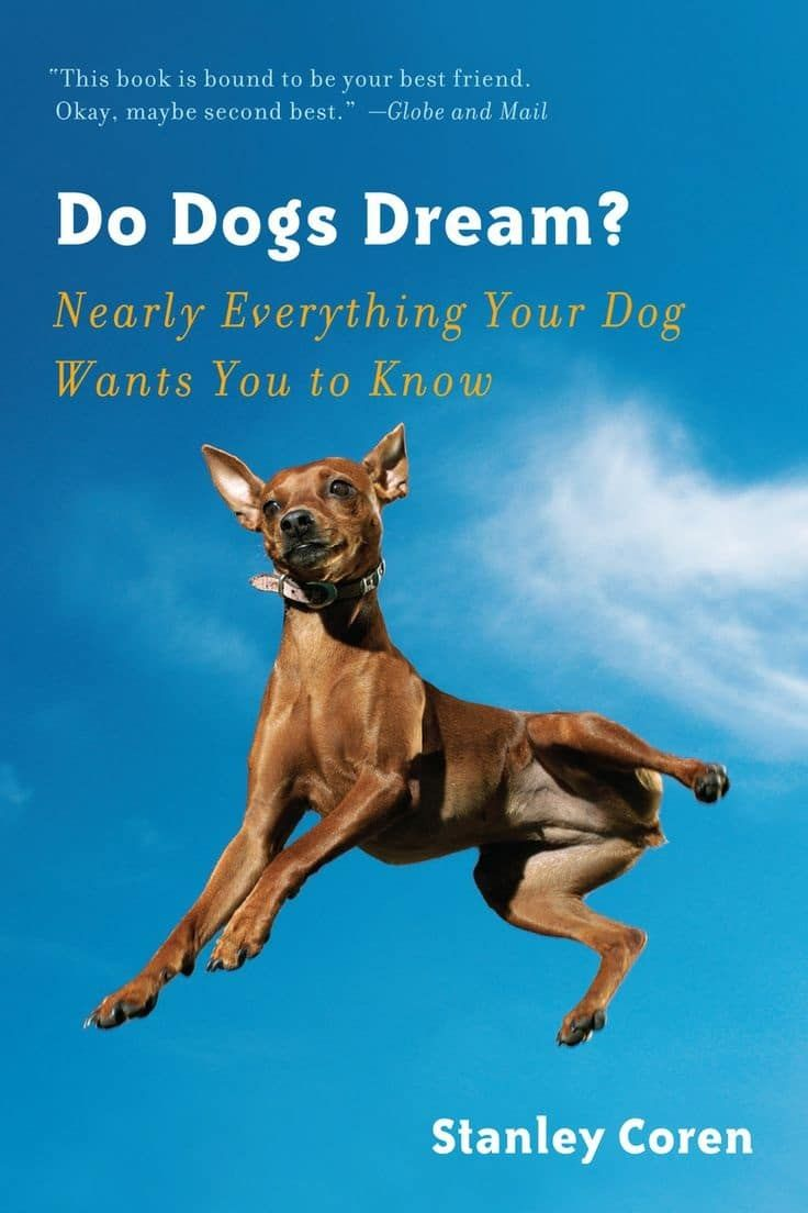 Do dogs dream book