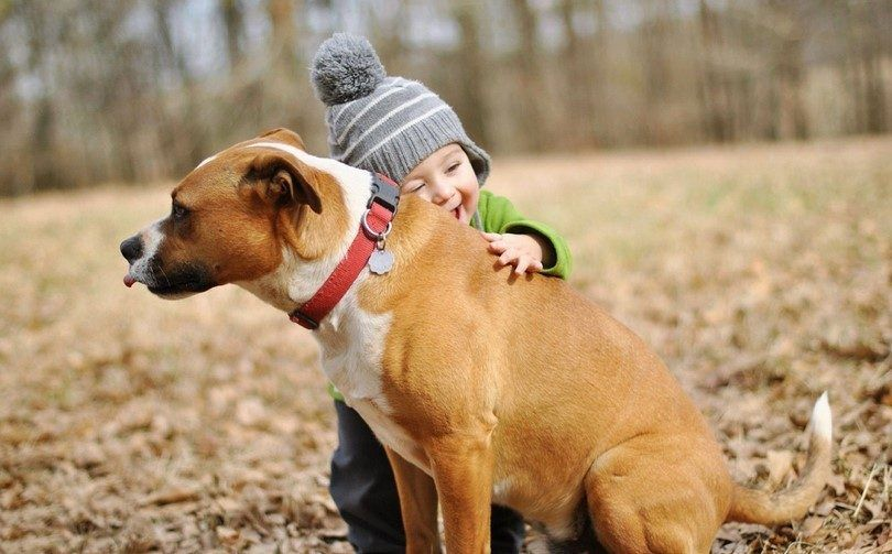 Little kid and dog love