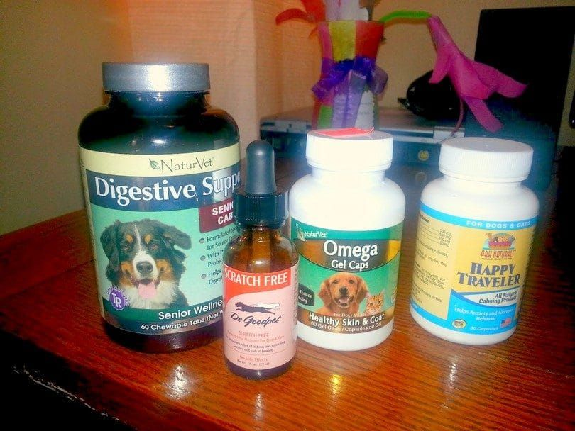 Treatments for dogs allergies