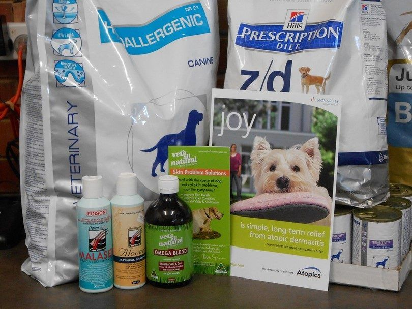 Treatments for dog