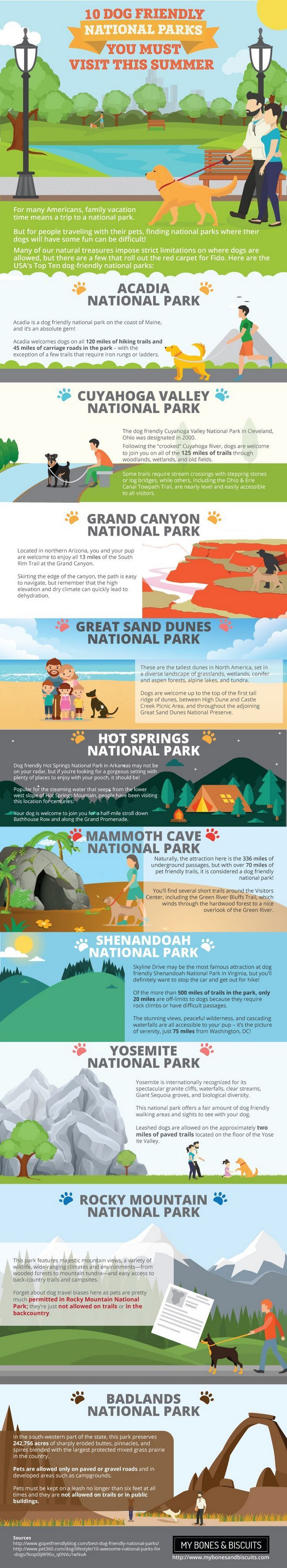Dog friendly us national parks: make the most of your summer!