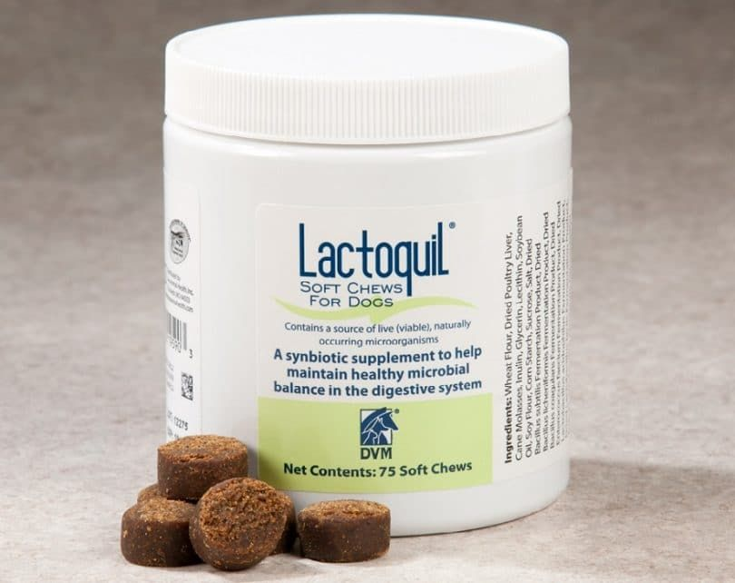 Supplement for balanced digestive dog system