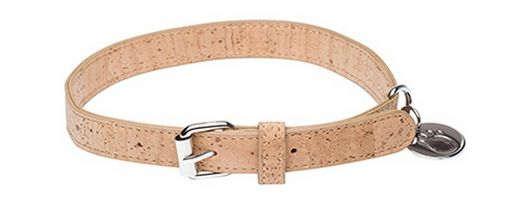 Dog Leashes Made of Collar Are Sustainable and Eco-Friendly