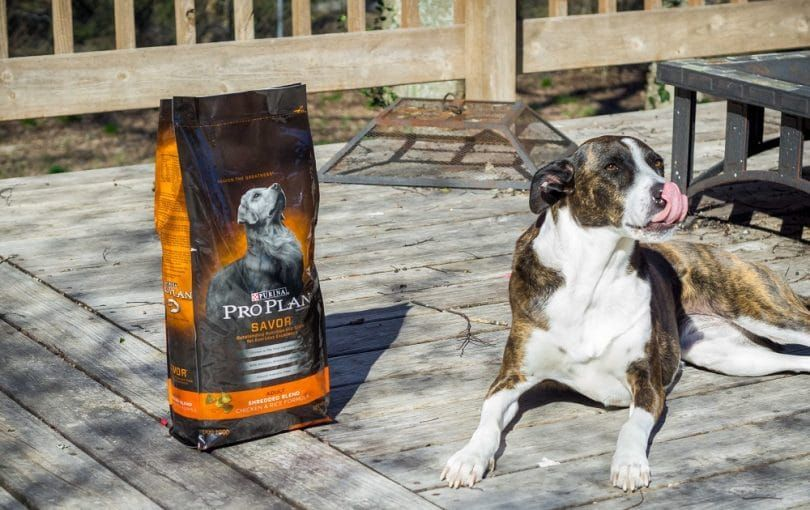 Purina Pro Plan Dry Dog Food