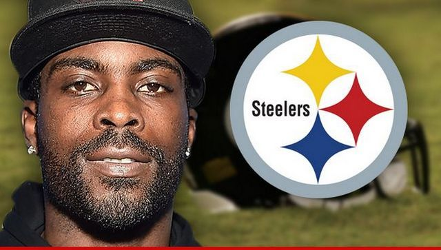 Dog-loving steelers fans furious as michael vick signed to team