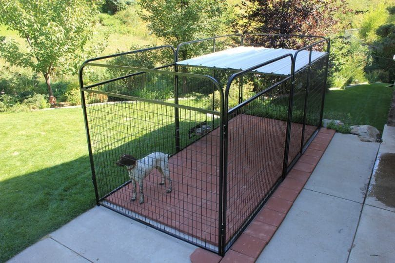 Build a roof on dog pen