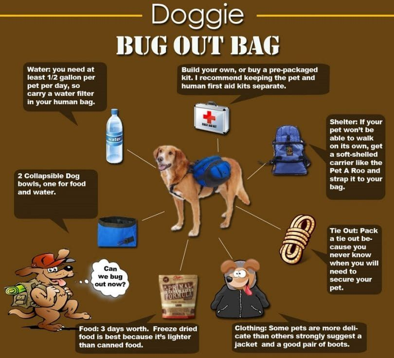 Doggie bug out bag