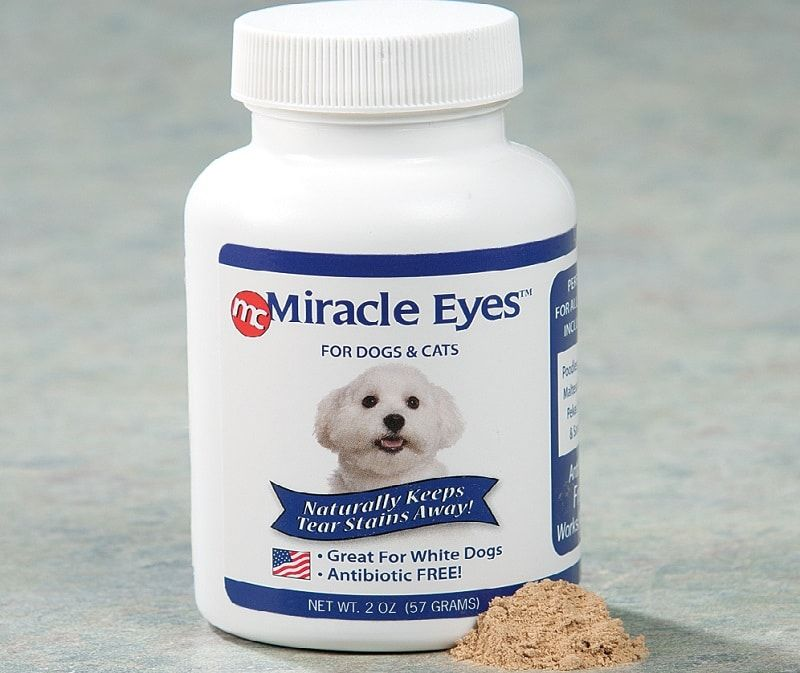 Products for dogs eyes