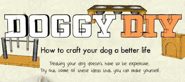 Doggy diy: craft a better life for your dog with these fun & easy projects